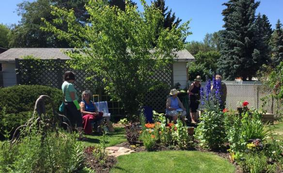 kathy's garden sketch 2017.jpg