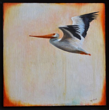Molly pelican