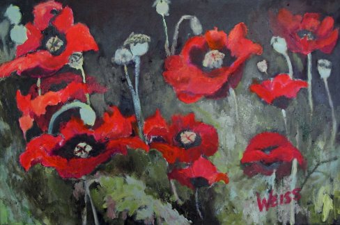 mygardenpoppies mw